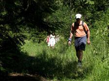 Pěší turistika na Šumavě